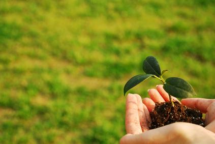KAORU FACTORY・東條は、良い土づくり(人材育成・組織開発)に必要な道具やノウハウを持っています。